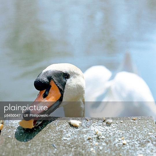 Annäherung - p5450047 von Ulf Philipowski