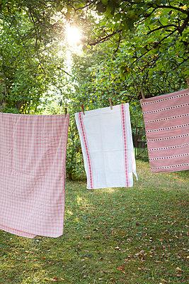 On the washing line - p454m739666 by Lubitz + Dorner