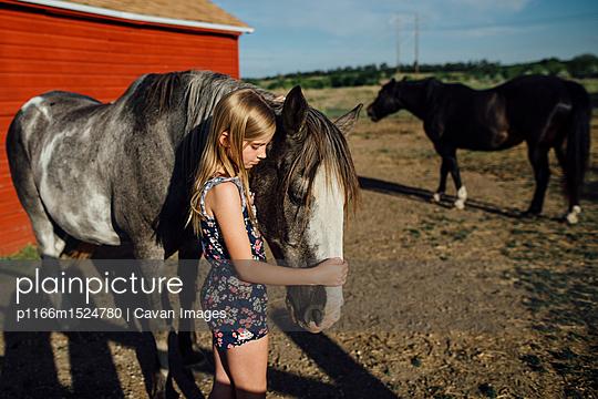 p1166m1524780 von Cavan Images