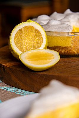 Lemon Slice - p1655m2233647 by lindsay basson