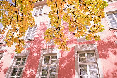 Autumn in Munich - p1149m1502283 by Yvonne Röder