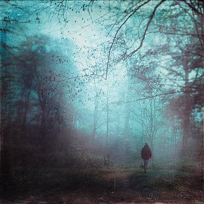 Germany, man walking on forest track in the morning - p300m2219206 by Dirk Wüstenhagen