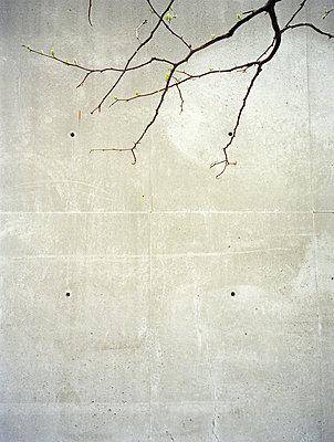 Betonwand - p4140104 von Volker Renner