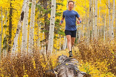 Man runs on log in aspen forest with fall color in Vail, Colorado - p1166m2137896 by Cavan Images