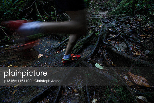 Junger Mann läuft durch den Dschungel, Dominica, Kleine Antillen, Karibik - p1316m1161192 von Christoph Jorda