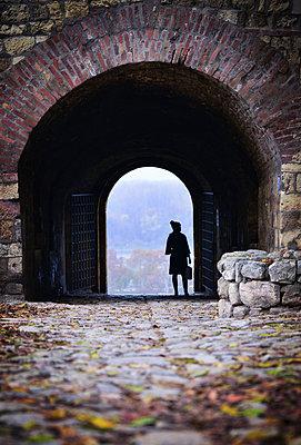 Woman in a castle - p1695m2290971 by Dusica Paripovic