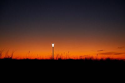 Street light - p1203m1044192 by Bernd Schumacher