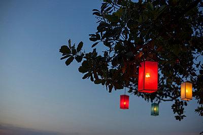 Lampions im Baum II - p586m859175 von Kniel Synnatzschke