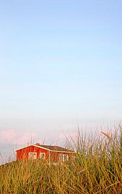 Sommerhaus auf der Düne - p382m2053130 von Anna Matzen