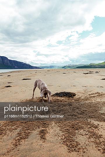 Sandkasten - p1168m1152512 von Thomas Günther