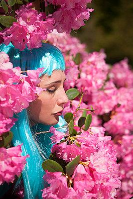 Rhododendron - p045m1149708 by Jasmin Sander