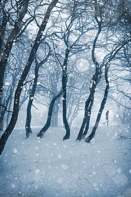 Schneespaziergang - p470m1539051 von Ingrid Michel