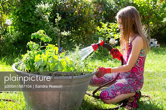Girl using garden hose for watering planted herbs in zinc tub in the garden - p300m1587104 von Sandra Roesch