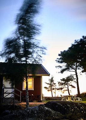 Schwedisches Haus bei Nacht im Wind - p1124m1165533 von Willing-Holtz