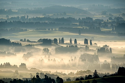 Germany, Bavaria, Upper Bavaria, Allgaeu, Pfaffenwinkel, View from Auerberg near Bernbeuren, morning fog - p300m1535518 by Martin Siepmann