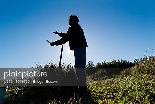 p343m1089788 von Bridget Besaw