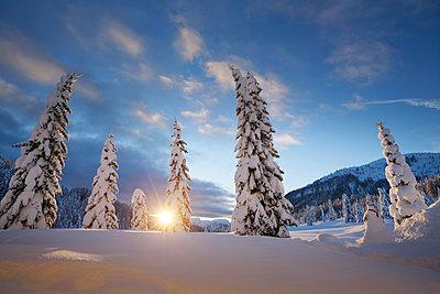Winterlandschaft, Kreuzbergpass, Südtirol, Italien - p1316m1160922 von Jan Greune