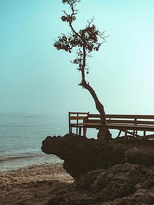 Seascape - p1166m2137137 by Cavan Images