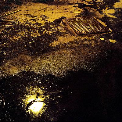 after rain   - p5673573 by Sandrine Agosti-Navarri