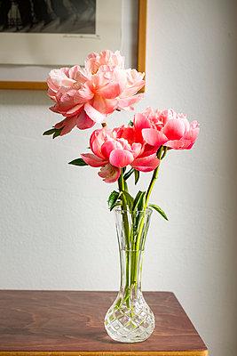 Paeonienblüten in geschliffener Glasvase - p948m2134087 von Sibylle Pietrek
