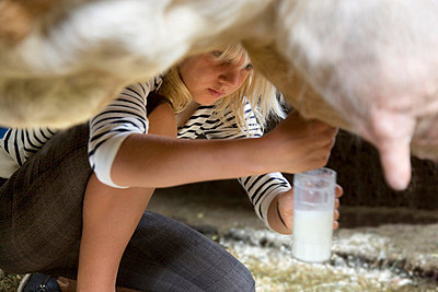 girl milking cow by hand - p4298171 by Henglein & Steets