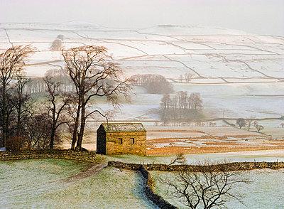 Snowy landscape with barn - p6440514 by Ellen Rooney