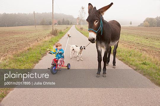p301m2017895 von Julia Christe