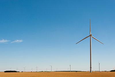 Wind farm - p1079m1074172 by Ulrich Mertens