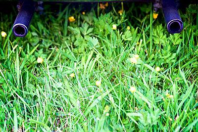 Auspuff und Wiese - p606m1573555 von Iris Friedrich