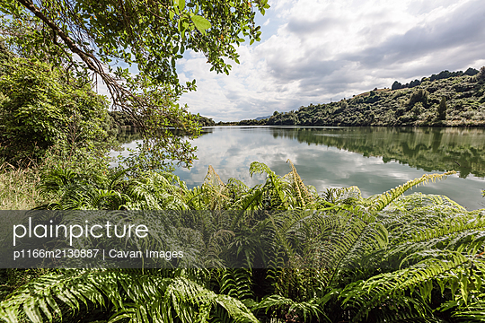 Landscape image of lush lakeside scene in New Zealand - p1166m2130887 by Cavan Images