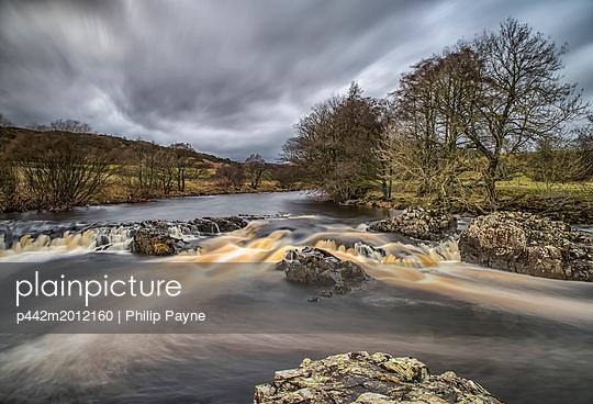 p442m2012160 von Philip Payne