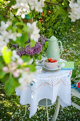 Kaffeetisch im Frühling - p1288m1110974 von Nicole Franke