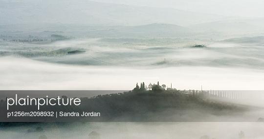 Morning Mist - p1256m2098932 by Sandra Jordan