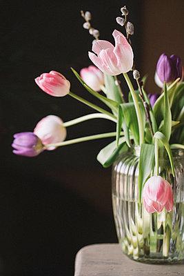 Fresh tulips in vase - p300m2004657 von Alberto Bogo