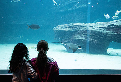 Two Oceans Aquarium, two children marvel at sea animals - p1640m2246228 by Holly & John
