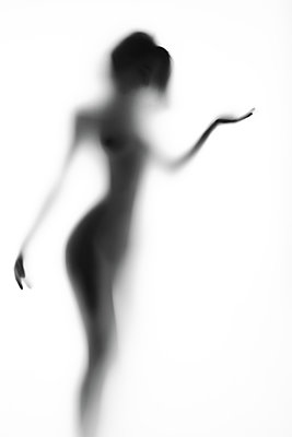 The outlines of femininity - p1561m2150188 by Andrey Cherlat