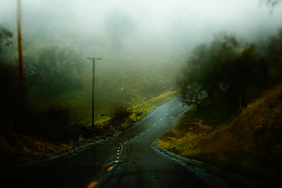 Country road in the fog - p704m1476469 by Daniel Roos