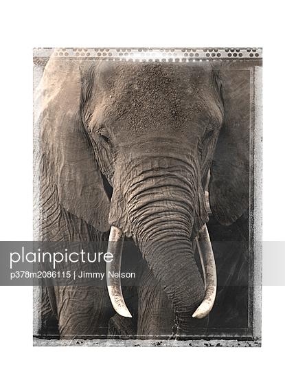tanzania - p378m2086115 by Jimmy Nelson