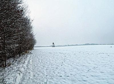Footprints in snowy rural field - p924m807230f by Still Factory