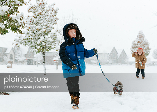 Boy with Shih Tzu walking on snow covered field while brother standing in background - p1166m1474240 by Cavan Images