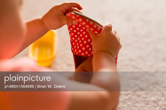 p1480m1564599 von Brian W. Downs