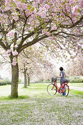 Bicycle tour during cherry blossom I - p464m852258 by Elektrons 08