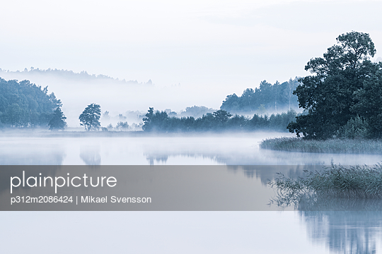 Fog over lake - p312m2086424 by Mikael Svensson