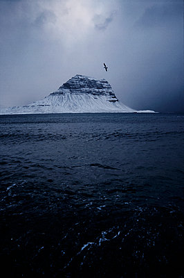 Seagull, Kirkjufell mountain, Iceland - p1028m2038695 by Jean Marmeisse