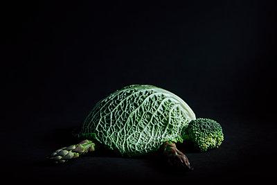 Vegetarisches Reptil - p1398m2204083 von Tabitha Genoveva Harter