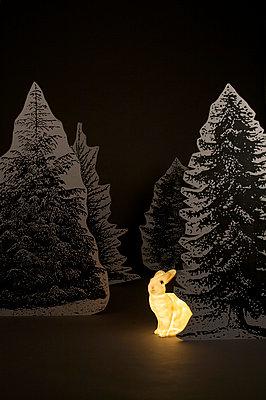 Hasenjagd - p6060436 von Iris Friedrich