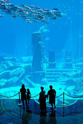 Visitor group in a marine aquarium - p1638m2291861 by Macingosh