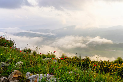 Albania, Fier County, View from Byllis, landscape and morning fog - p300m2023644 von Martin Siepmann