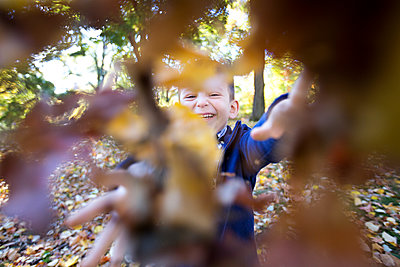 Toddler boy throwing leaves - p1211m1109060 by Danny Weiss