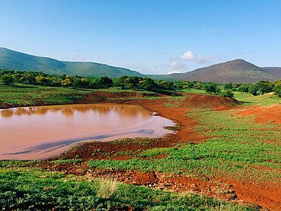 Südafrika - p988m1153071 von Rachel Rebibo